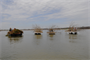 Four barges were used during Friends Invovled with Smithville Habitat (FISH) day Saturday, April 13, 2013. The U.S. Army Corps of Engineers partnered with the Missouri Department of Conservation and Clay County Parks for this 2nd annual event. Photo by Trisha D. Dorsey.